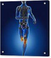 3d Running Medical Man Acrylic Print