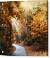 Late Autumn Trail Acrylic Print