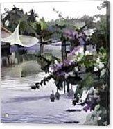 Ducks And Flowers In Lagoon Water Acrylic Print