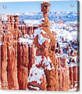 Eroded Rocks In A Canyon, Bryce Canyon Acrylic Print