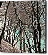 Island Of Moen In Denmark Acrylic Print