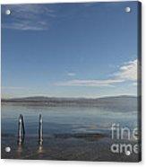 Lakefront Acrylic Print