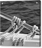 The Ropes Acrylic Print by Laura Fasulo