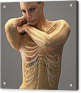 The Skeletal System Female Acrylic Print