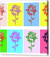 8 Warhol Roses By Punt Acrylic Print