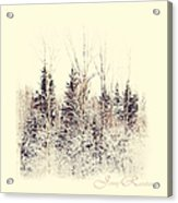 Winter Wonderland. Elegant Knickknacks From Jennyrainbow Acrylic Print by Jenny Rainbow