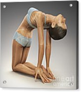 Yoga Camel Pose Acrylic Print