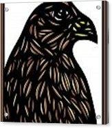 Labore Eagle Hawk Brown White Acrylic Print