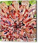 Mann Flowers Acrylic Print