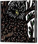 Mitzner Eagle Hawk Green Black Brown Acrylic Print