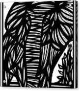 Cubr Elephant Black And White Acrylic Print