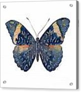 89 Red Cracker Butterfly Acrylic Print
