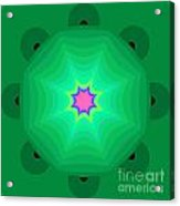 The Kaleidoscope Acrylic Print