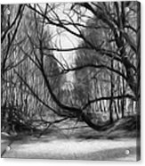 9 Black And White Artistic Painterly Icy Entrance Blocked By Braches Acrylic Print