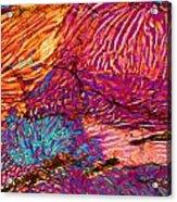 Myrmekite Acrylic Print