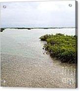 Scenes From Key West Acrylic Print