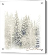Winter Wonderland. Elegant Knickknacks From Jennyrainbow Acrylic Print