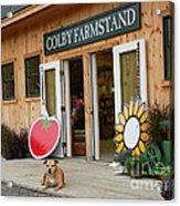 #923 D720 Colby Farm Stand Acrylic Print