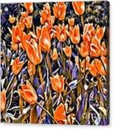 9344 Acrylic Print
