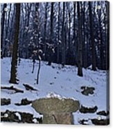 Stone Altar In The Woods Acrylic Print