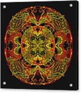 995 - Mandala In Earth Colours   Acrylic Print