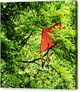 A Bad Day For Mary Poppins Acrylic Print