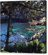 A Beautiful Cove At Point Lobos Acrylic Print