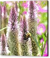 A Bee's Work Is Never Done Abwndwc Acrylic Print