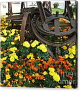 A Blast From The Past Acrylic Print