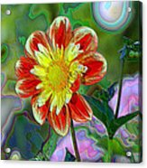 A Blooming Smile  Acrylic Print