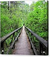 A Bridge To Somewhere Acrylic Print