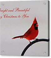A Bright And Beautiful Merry Christmas To You Acrylic Print