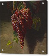 A Bunch Of Grapes Acrylic Print by Andrew John Henry Way