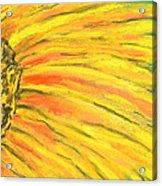A Burst Of Yellow Acrylic Print