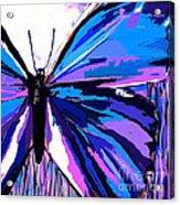 A Butterfly So Blue Acrylic Print