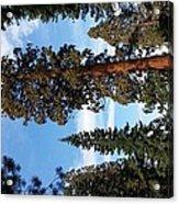 A California Sight Acrylic Print