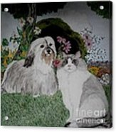 A Cat And A Dog Acrylic Print