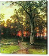 A Child Walks In A Forest Acrylic Print