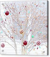 A Christmas Tree Acrylic Print