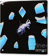 A Clockwork Blue Acrylic Print