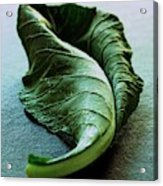 A Collard Leaf Acrylic Print by Romulo Yanes