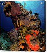 A Colorful Reef Scene With Sunburst Acrylic Print