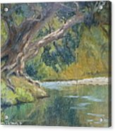 A Coramandel Stream Acrylic Print