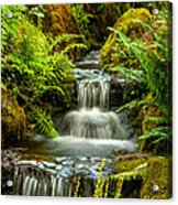 A Creek Runs Through Acrylic Print