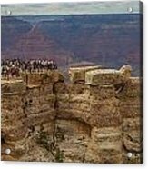A Crowd And A Canyon Acrylic Print