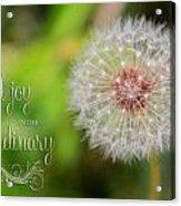 A Dandy Dandelion With Message Acrylic Print