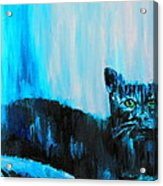 A Dark Ambiguous Presence Questioned All Acrylic Print