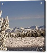 A Day Of Winter Acrylic Print