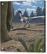A Deinonychosaur Leaves Tracks Acrylic Print