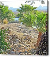 A Desert Landscape Acrylic Print